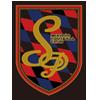 SP京都FC